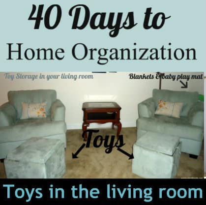 Organize Toys In The Living Room 40 Days