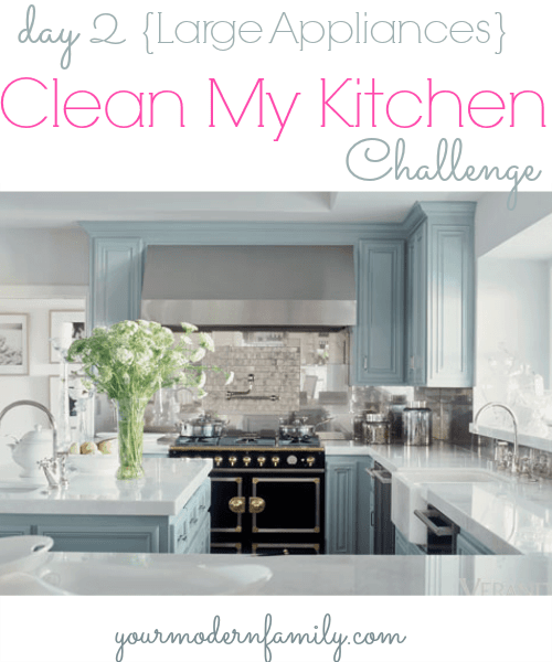 Clean My Kitchen Your Tips For Cleaning Large Appliances