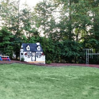 Backyard: Before & After