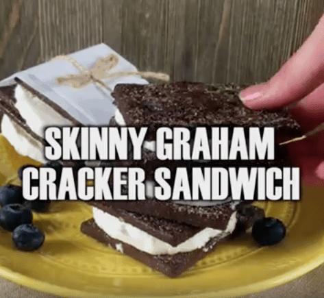 skinny Weight Watcher ice cream sandwich - 1 weight watcher point