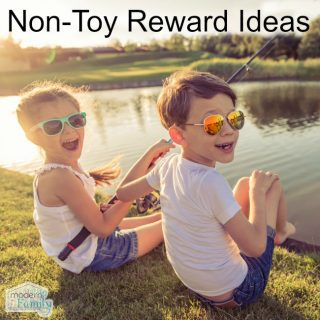 Non-Toy Rewards