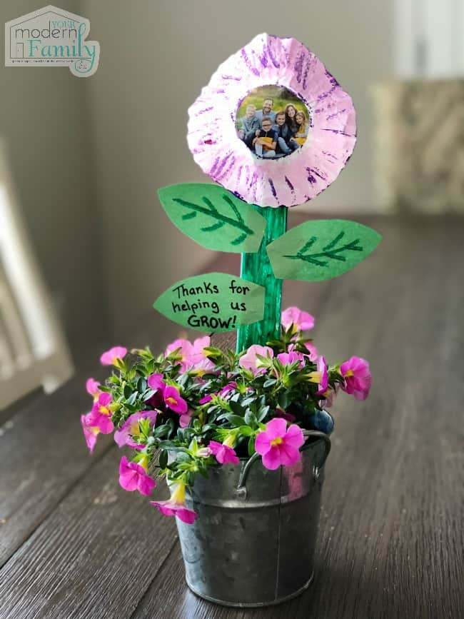 Last minute Mother's Day gift plant